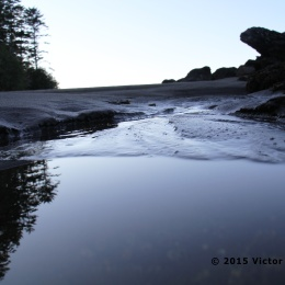 reflections-of-the-trees-and-rocks
