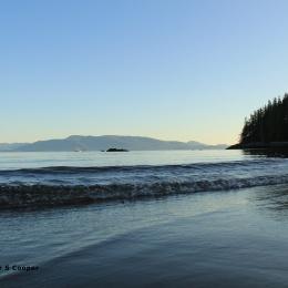 waves-rushing-to-shore